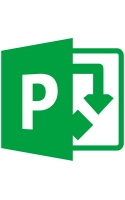 Business Microsoft Project
