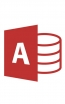 Business Microsoft Access